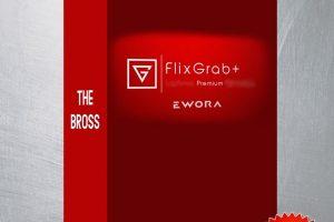 FlixGrab Crack Premium Version Free 5.2 Download [Latest]