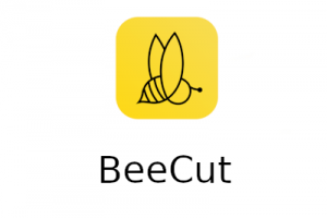 BeeCut Crack 1.8.2.32 With Activation Key [Latest] 2021 Free