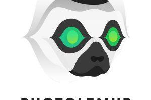 Photolemur Crack 31.1.0.2443 Full Version Keygen Free Download 2021